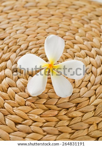 frangipani and Wicker placemat - stock photo