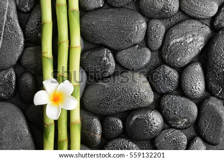 frangipani flower and bamboo on the black stones