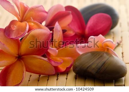 Frangipani flower and polished stone on tropical bamboo mat - stock photo