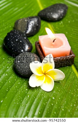 Frangipani flower and spa stones.DOF - stock photo