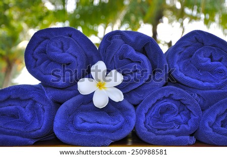 Frangipani flower between towels - stock photo