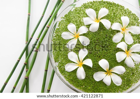 frangipani with leaf in bowl of and bamboo grove - stock photo