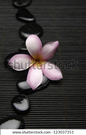 frangipani with zen stones on mat - stock photo