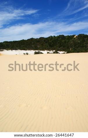 Fraser Island sand dunes - stock photo
