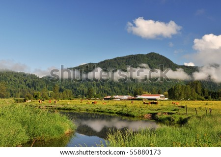 Fraser Valley at foggy sunrise, British Columbia, Canada - stock photo
