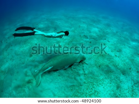 free diving girl and manatee in deep sea. two mermaid. - stock photo