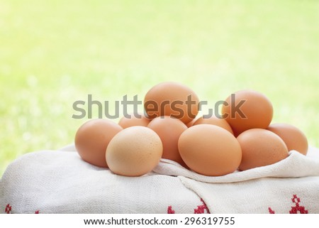 Free range eggs on a towel on a bright sunny background. Shallow depth of field. - stock photo