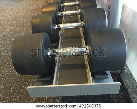 Free weights sitting on a weight rack. dumbbells in modern sports club. Weight Training Equipment