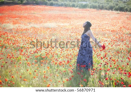 Freedom at poppies field under the sunlight - stock photo