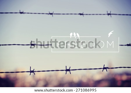 Freedom motivational inspiring quote and landscape with barbed wire fence background. Vintage soft light hipster style. - stock photo