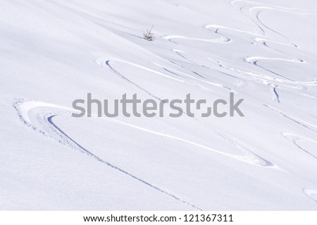 freeride tracks on powder snow in the mountains