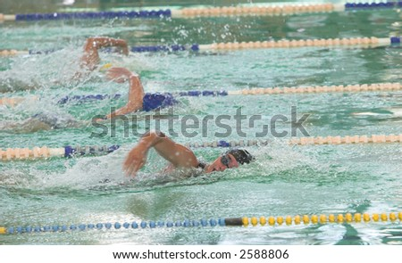 Freestyle swimmers going neck on neck in the pool