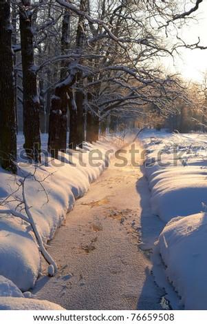 freeze creek near oak alley. Sunny snow day in park - stock photo