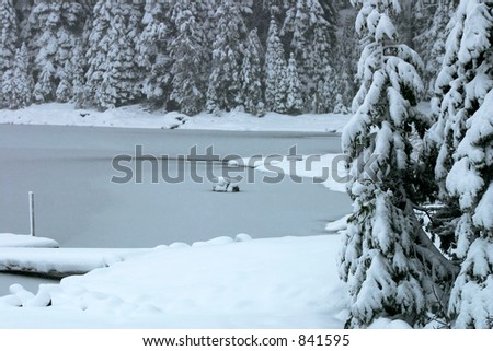 Freezing pond during snow storm - stock photo