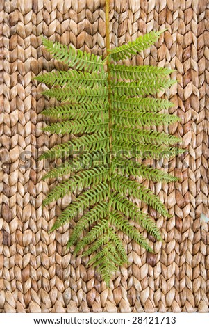 Fren leaf on a grass mat shot at a day spa - stock photo
