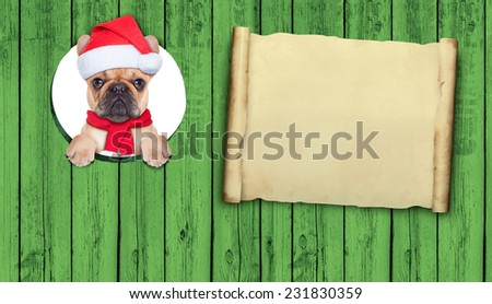 french bulldog dog dressed as santa claus behind a wood wall as a christmas december decoration with empty space as banner - stock photo