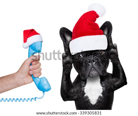 french bulldog dog listening carefully what you have to say, isolated on white background on christmas time with santa claus hat - stock photo