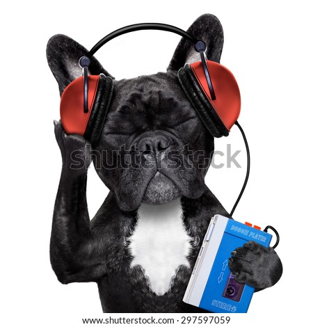 french bulldog dog  listening to oldies with headphones or earphones from a  retro cassette tape   recorder, relaxing with eyes closed, isolated on white background - stock photo