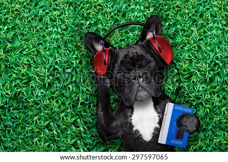 french bulldog dog  listening to oldies with headphones or earphones from a  retro cassette tape   recorder, relaxing with eyes closed,lying on  grass at the park or meadow - stock photo