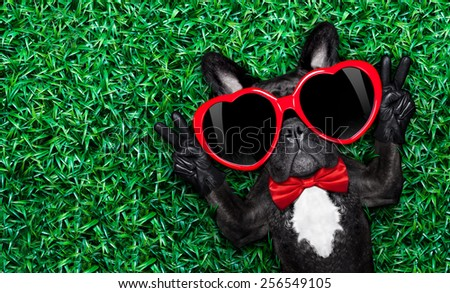french bulldog dog lying on the grass with love , peace and harmony finger, wearing a red heart shape sunglasses - stock photo