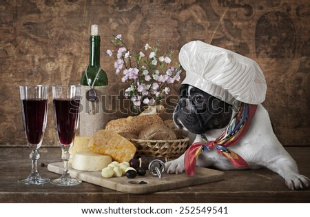 French bulldog in chef's hat lying on the table with cheese plate and wine bottle  - stock photo