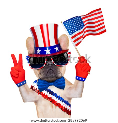french bulldog waving a flag of usa on independence day on 4th  of july , isolated on white background