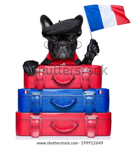 french bulldog waving flag of france with luggage - stock photo