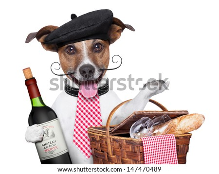 french dog with red wine and Picnic basket - stock photo