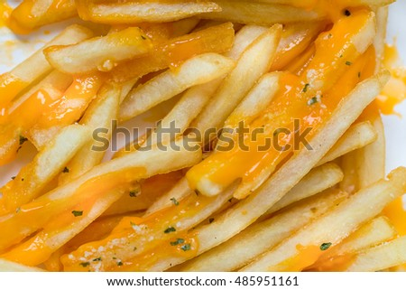 French Fries with Melted Cheddar Cheese