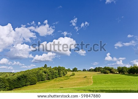 French hill - stock photo