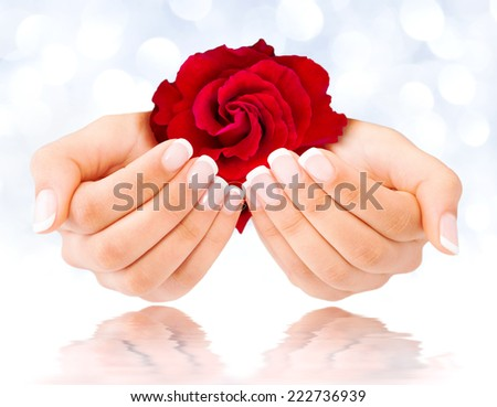 french manicure with red rose on water  - stock photo