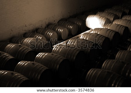 French Oak barrels with wine being stored in Pleisir de Merle wine cellar in Franschhoek, Western Cape, South Africa - stock photo