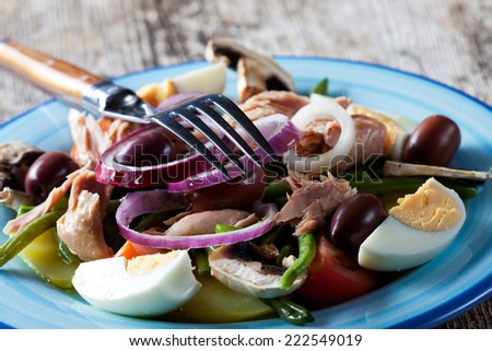 french salad nicoise on a plate  - stock photo