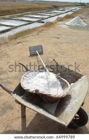 french salt pans at noirmoutier vend���©e. - stock photo
