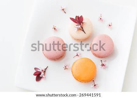 French sweet delicacy, macaroons colorful  variety on a plate with spring blossom, top view.