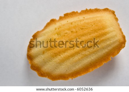 French traditional madeleines cookie, isolated - stock photo