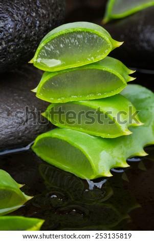 fresh aloe vera spa setting with wet massage stones  - stock photo