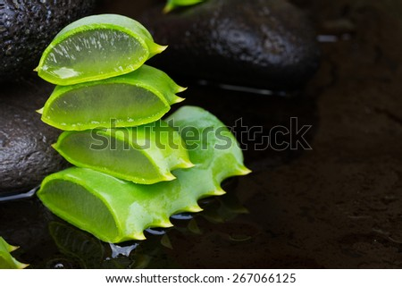 fresh aloe vera spa setting with wet massage stones  ob black background - stock photo