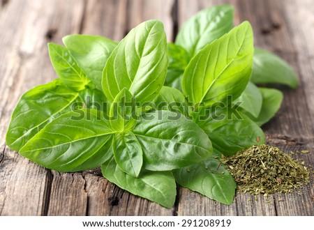 Fresh and dried basil - stock photo