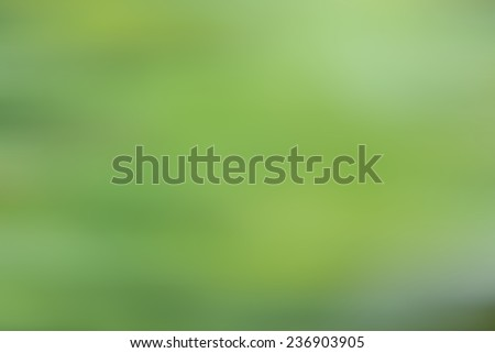 fresh and green leaves  background with blur motion - stock photo
