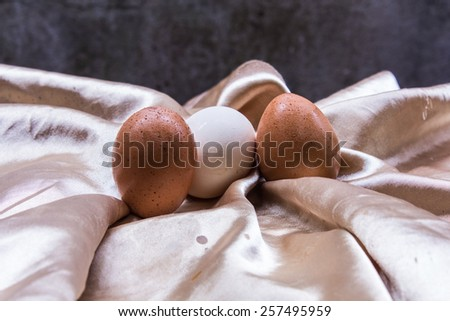 Fresh and healthy eggs, still life Easter - stock photo