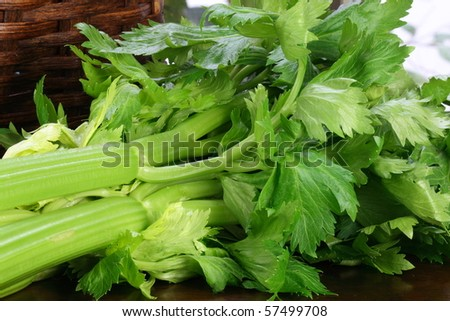 fresh and healthy organic celery on  wood table station delicious vegetarian ingredient