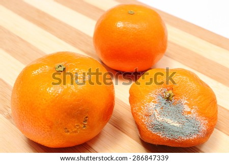 Fresh and moldy tangerines on wooden cutting board