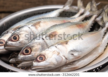Fresh and raw silver tuna or mackerel fishes in stainless bowl for food preparation background - stock photo