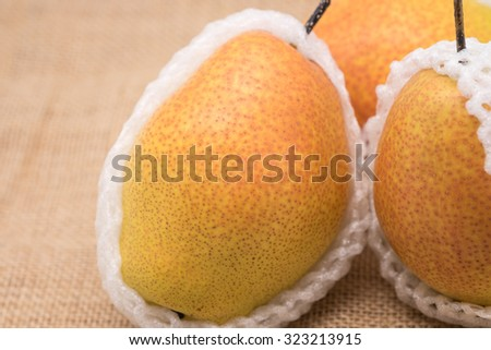 Fresh and ripe red yellow pear fruits wrapped in white foam for nature background - stock photo