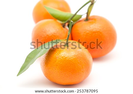 Fresh and sweet mandarin oranges with green leafs on white background - stock photo