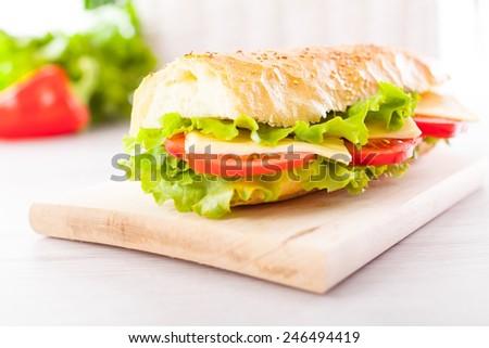 Fresh and tasty sandwich - stock photo