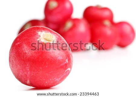 Fresh appetizing radish on a white background