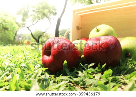 Fresh Apples in a wooden crate on grass - stock photo