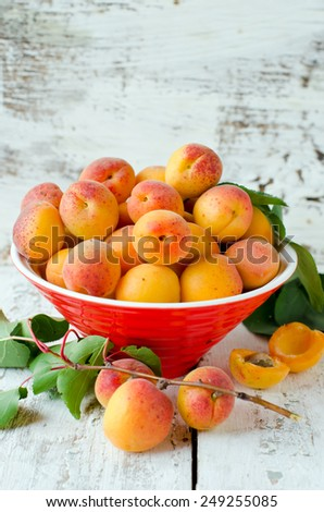 Fresh apricots in a bowl - stock photo
